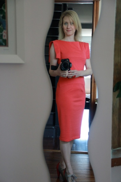 Paneled Sheath Dress - the actual colour
