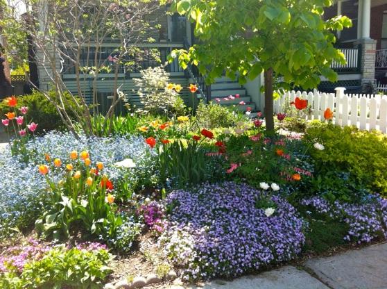 garden_May2013