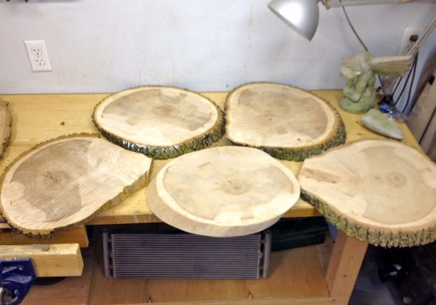 tree slabs to be made into table