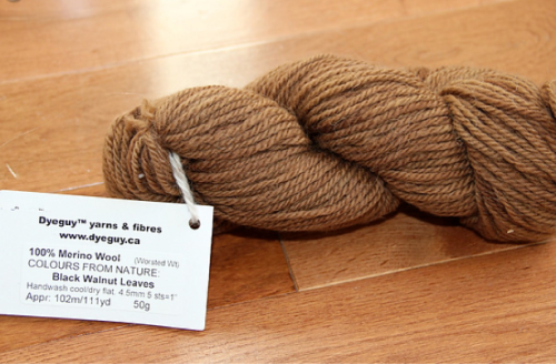 Dyeguy yarn from the Fibre Garden
